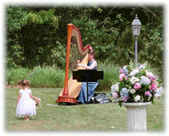 Cape Cod Wedding harp